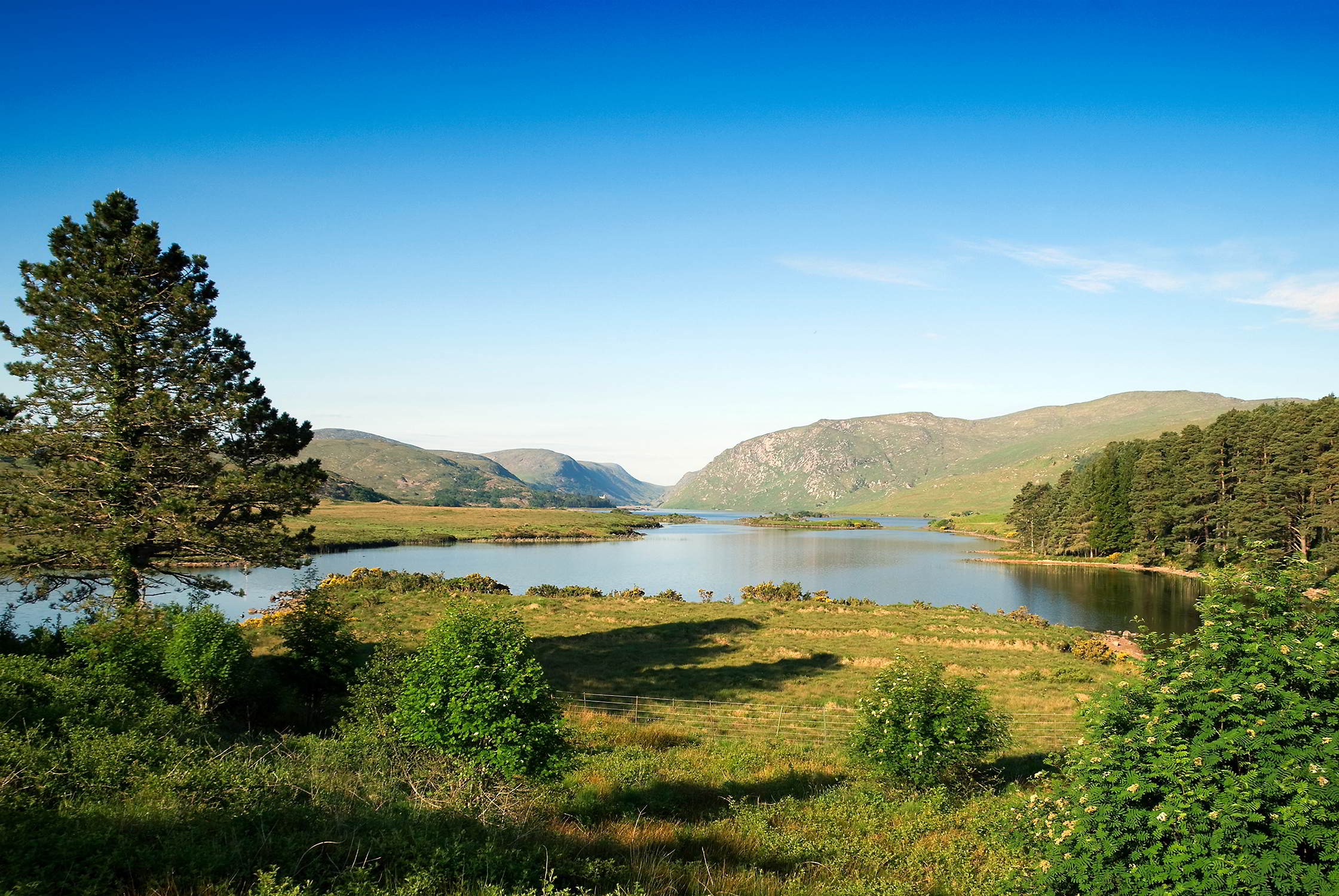 Parques nacionales características
